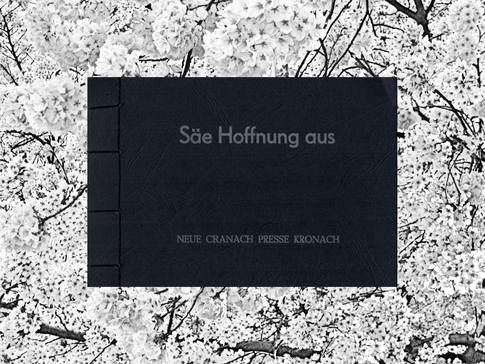 Säe Hoffnung (Cover)